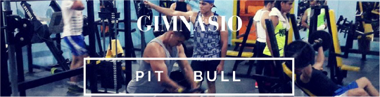 gym_pitbull