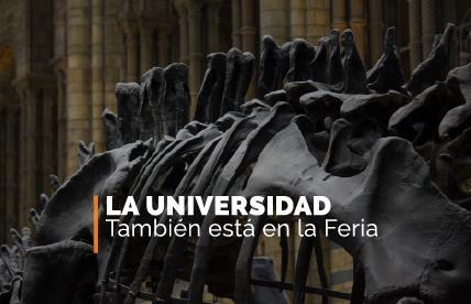 Universidad en la Feria